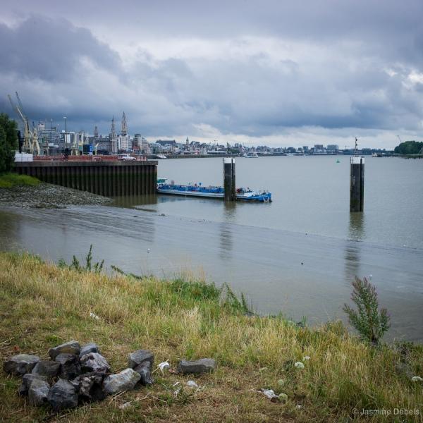 Zicht op Antwerpen vanuit de haven