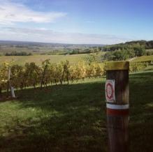 environ de Bergerac